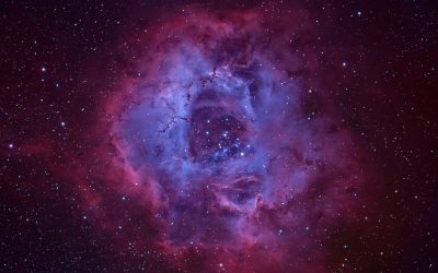 Rosette Nebula, a transoceanic image by JM Drudis & Aleix Roig
