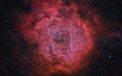 The Rosette Nebula, NGC 2237