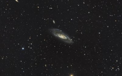 M106 galaxy and friends, wide field