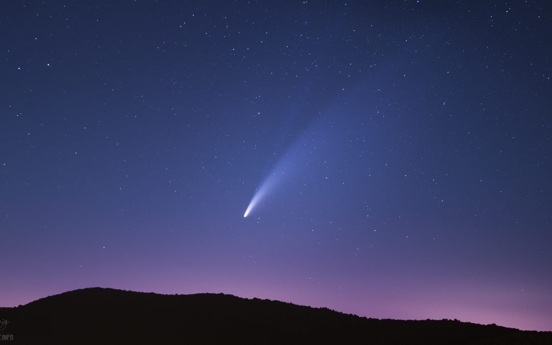 Double tailed NEOWISE Comet