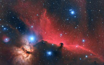 The Horsehead and Flame Nebulae