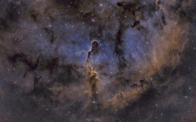 The Elephant's Trunk Nebula, IC1396