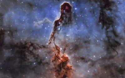 Elephant's Trunk Nebula, IC1396