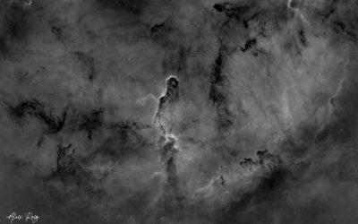 The Elephant's Trunk Nebula, IC1396 – Hα emission
